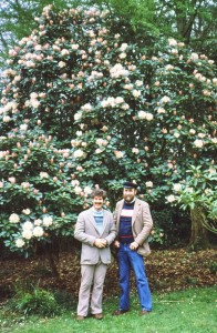 So here we are in front of the Stourhead Rhodies.